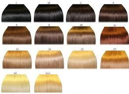 hair color chart hair color chart 2 qlassy hair extensions