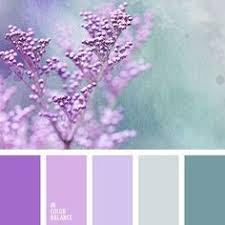 color palette 2931 color palette ideas color pallets color