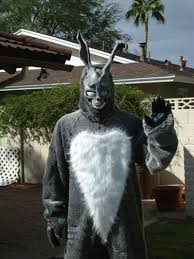 Donnie Darko Costume Photo 6 Of 6 From Costumes