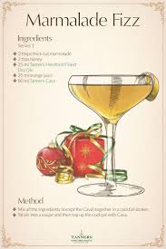 christmas cocktails recipes 10 best christmas cocktail recipes images on pinterest christmas