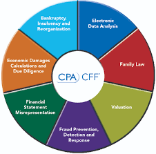 forensic accounting aicpa