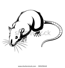 rat tattoo stock images royalty free images u0026 vectors shutterstock