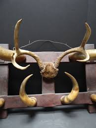 western steer horn hat coat rack sold a353 early california antiques