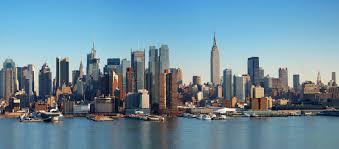 11 best professional organizers in new york city u2013 sparefoot