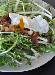 cuisiner le pissenlit les 25 meilleures idées de la catégorie salade de pissenlit sur