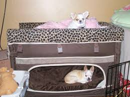Bunk Bed For Dogs Simple Design Bunk Beds Modern Bunk Beds Design