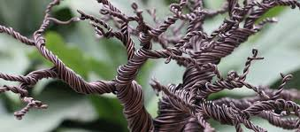 sculpted wire tree morning class longwood gardens