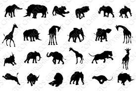 african safari animals african safari animals silhouettes illustrations creative market