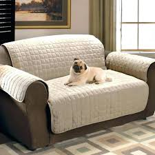 best sofa fabric for dogs sofa cool best couch fabric for dogs 19 low profile sofa protector