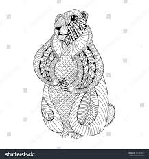 hand drawn groundhog coloring pages stock vector 361549877