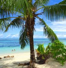 Worlds Best Beaches by The 5 Best Beaches In The Seychelles