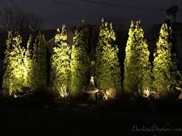 25 beautiful arborvitae landscaping ideas on planting