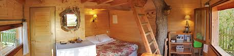 chambre dans un arbre accueil chambre d hôtes cabane perchée cabane dans les arbres