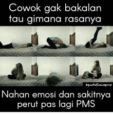 Pms Meme - 25 best memes about pms pms memes