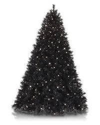 midnight black tree black trees