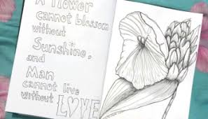 sketch of the day no 107 rose hip plant in devon u2013 the crazy bag