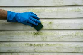How To Do Spring Cleaning How To Clean Vinyl Siding