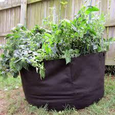 online get cheap gallon plant pots aliexpress com alibaba group