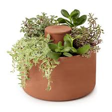self watering planter easy garden low maintenance uncommongoods