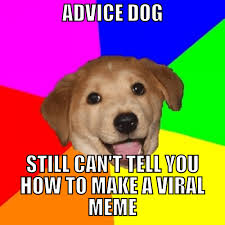 How To Meme - can science predict the next big meme digital trends