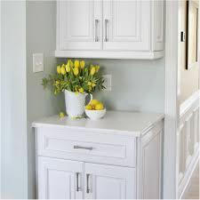 kitchen cabinet pulls and hinges fantastic overwhelming kitchen cabinet hardware hinges popular