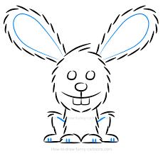 a bunny illustration