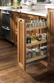 kitchen cabinet spice organizer in cabinet spice rack slide medium size of home out spice racks for