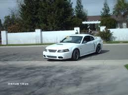 1999 Mustang Black 1999 2004 Mustang Cobra Front Bumper Ford Mustang Forum