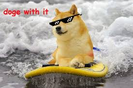 Doge Meme Images - jimmyfungus com the best of doge the absolute best of the shibe