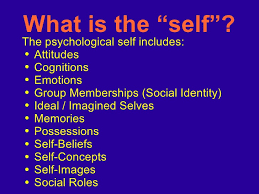 Define Selves - social self