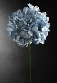 light blue flowers paper parchment blue hydrangeas