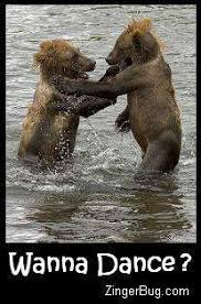 Dancing Bear Meme - dance glitter graphics comments gifs memes and greetings for