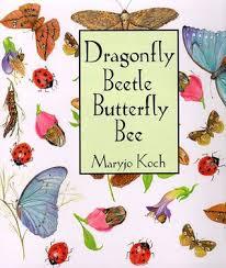 dragonfly beetle butterfly bee by maryjo koch