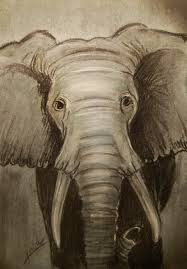 28 the elephant king pastel drawing tutorial youtube