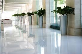 indoor office plants miami plants interior plant service