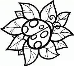 color pages of cute easy animal free printable ladybug coloring