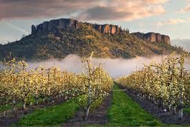 Table Mountain Oregon Enter To Win