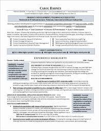 functional executive best executive resume format luxury executive resume functional