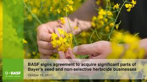 Seeking Bayer Basf Basfy To Acquire Significant Parts Of Bayer S Bayzf Seed