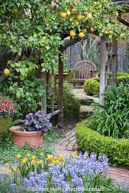 create garden rooms