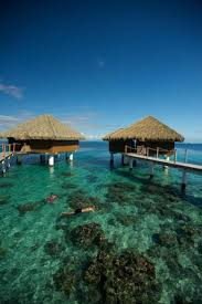 the 25 best tahiti resorts ideas on pinterest holidays to bora