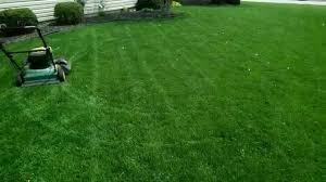 make backyard chipping greens backyard course 2014 youtube