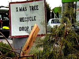 dump that dead christmas tree nbc 10 philadelphia