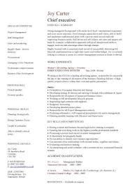 executive resumes templates pic chief executive cv template 1 cv resume professional resumes