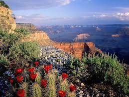 28 best national parks 10 world best national parks amazing