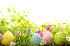 pastel easter eggs colorful easter eggs in grass wallpaper