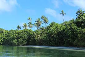 m u0026a riverside beach bungalows chol palau booking com
