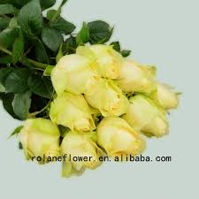 fresh flowers in bulk fresh cut bulk flowers wholesale bulk flower suppliers alibaba