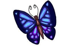 how to draw a simple butterfly drawingnow