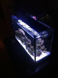 current usa orbit marine aquarium led light nanoclown s fluval spec v retired pico reefs nano reef com